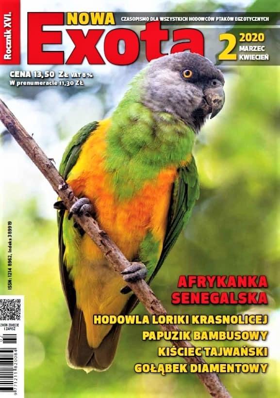 Nowa Exota 2020/2 cover